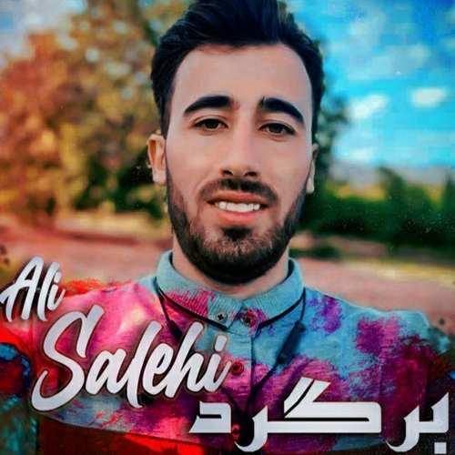 دانلود موزیک جدید علی صالحی برگرد