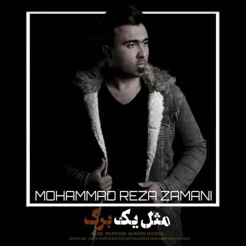 دانلود موزیک جدید محمد رضا زمانی مثل یه برگ