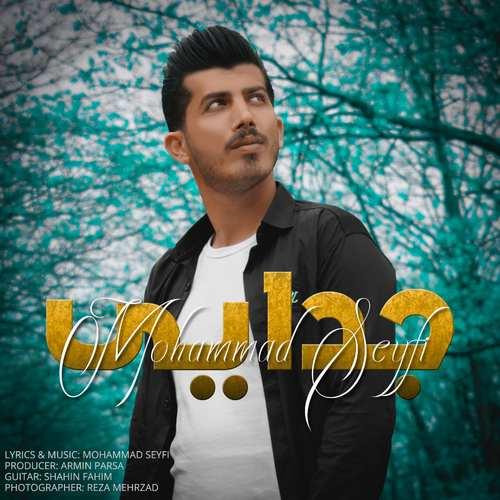 دانلود موزیک جدید محمد سیفی جدایی