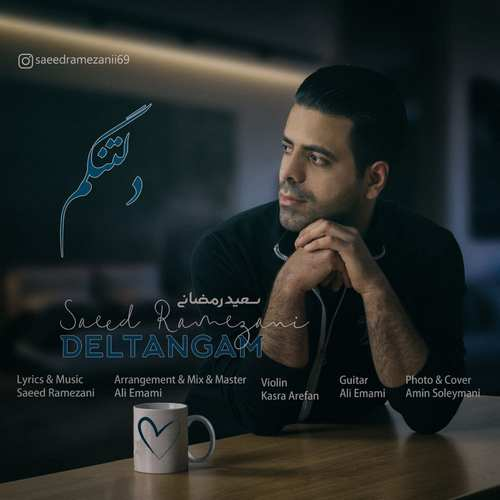 دانلود موزیک جدید سعید رمضانی دلتنگم