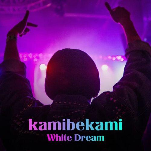دانلود موزیک جدید کامی بکامی رویای سفید